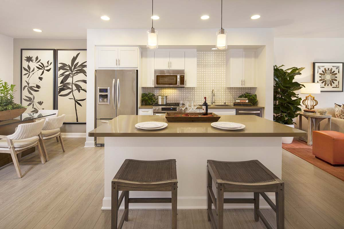 $1,040/mo Single Room in Beautiful Los Angeles Luxury Apartment for rent