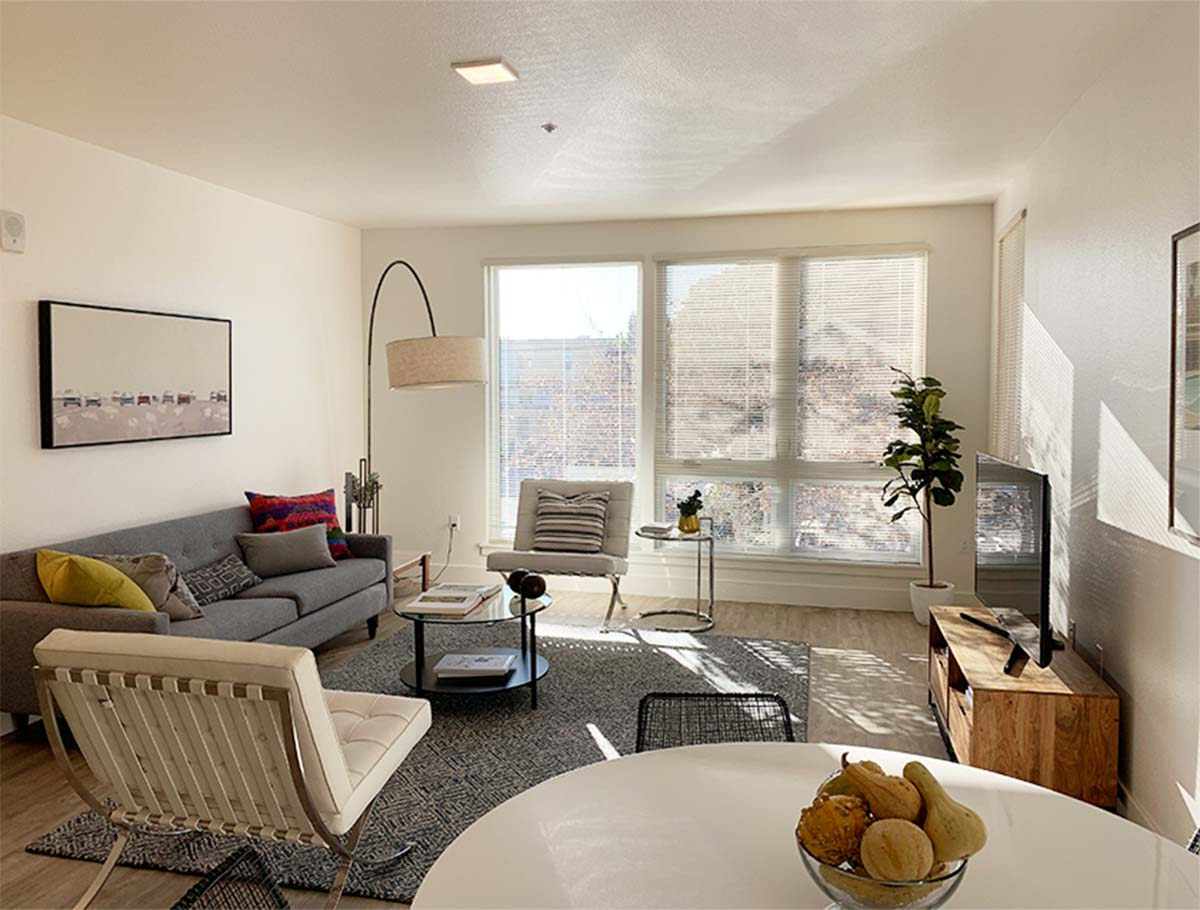 $900/mo Single Room in Beautiful Seattle Luxury Apartment for rent